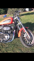 Harley Davidson 2003 883 Anniversary Sportster